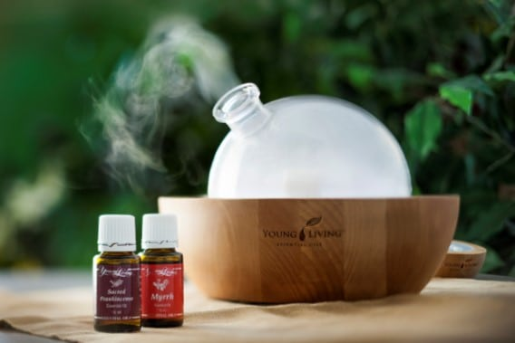 Introduction to the Art and Science of Essential Oils